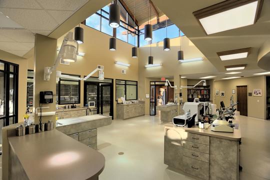 hendersonville-animal-hospital2